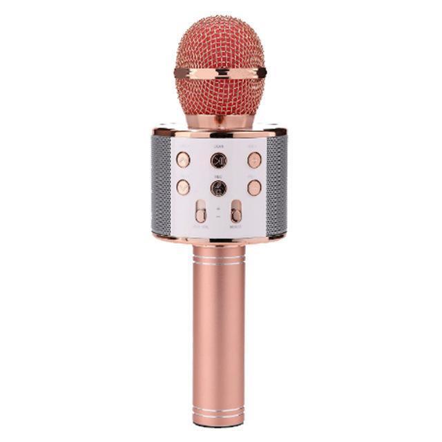 Portable Wireless Karaoke Microphone